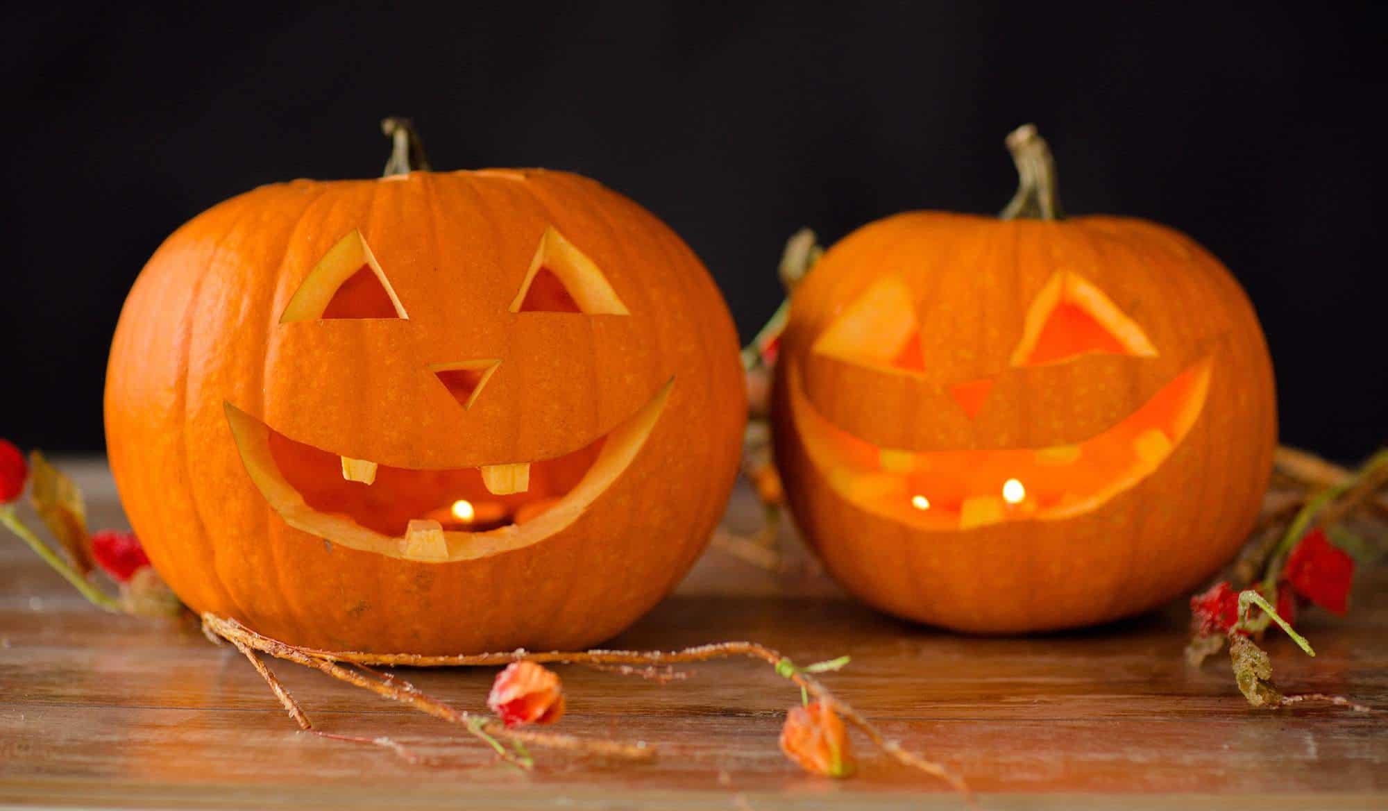 Short chubby pumpkin faces