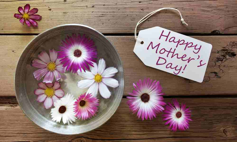 How To Say Happy Mothers Day To Your Mother In Law Allwordingcom