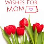 Happy Valentine's Day, Mom