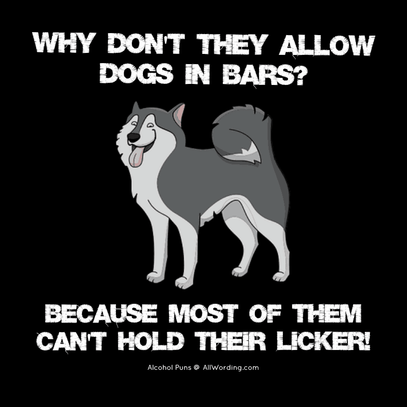 Why don't they allow dogs in bars? Because most of them can't hold their licker!