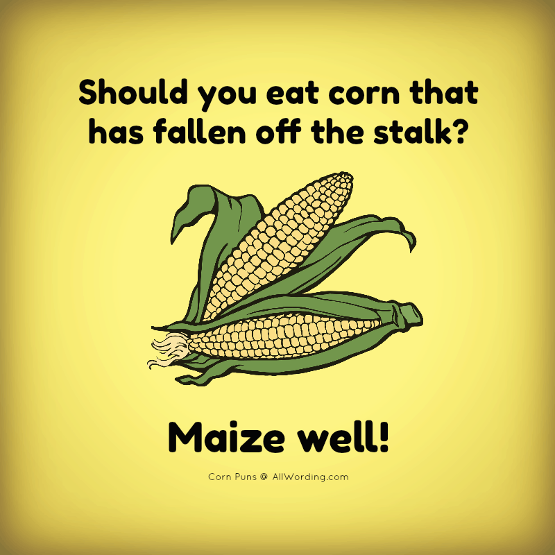 Should you eat corn that has fallen off the stalk? Maize well!