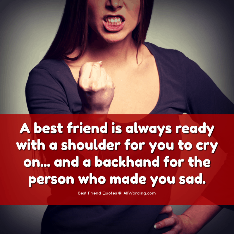 A best friend is always ready with a shoulder for you to cry on, and a backhand for the person who made you sad.
