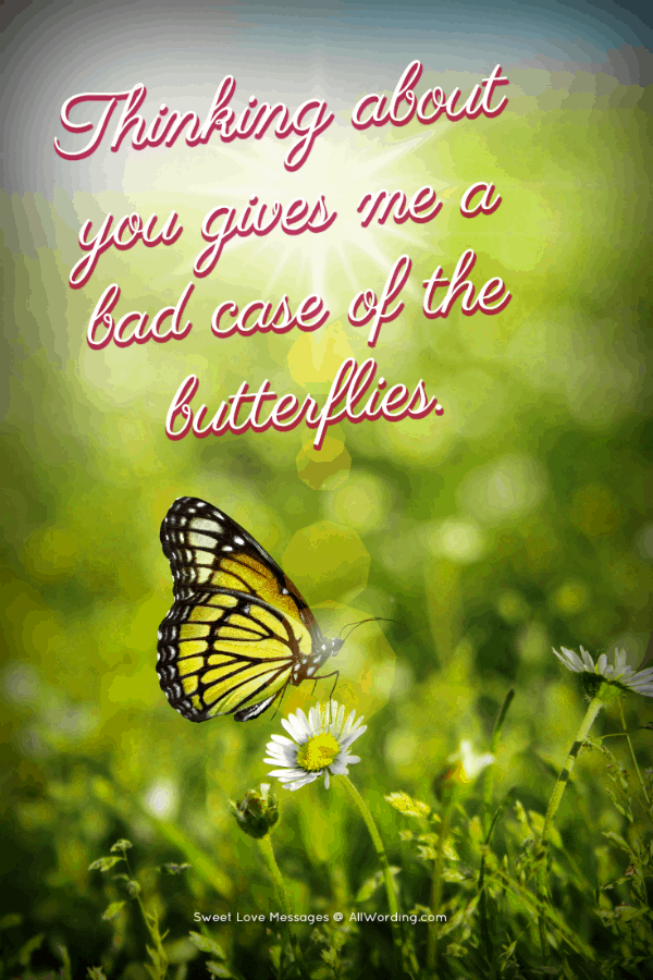 Thinking about you gives me a bad case of the butterflies.
