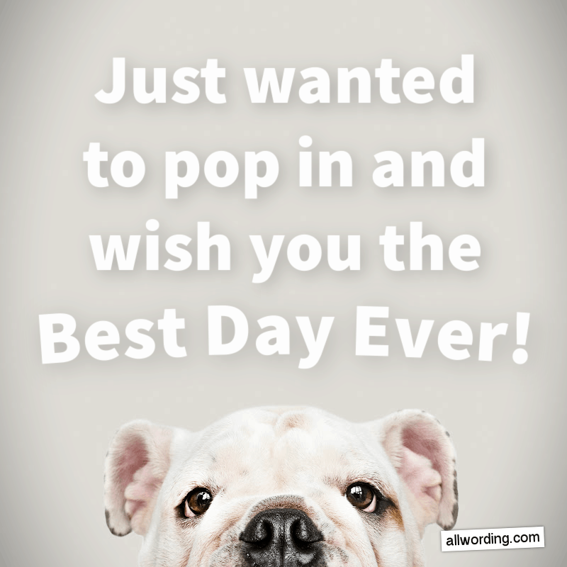 Just wanted to pop in and wish you the Best Day Ever!